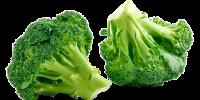 broccoli_header-removebg-preview